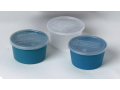 Image Of Denture Container with Lid, 8 oz., Aqua