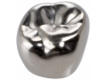 Image Of 3M ESPE Stainless Steel First Permanent Molar Replacement Crown Upper Right Size 6-UR-5
