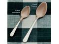 Image Of North Coast Plastic Coated Spoon, Teaspoon