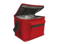 Image Of Premium Insulated Bio Transport Cooler